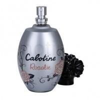Perfume Grés Cabotine Rosalie Feminino 100ML