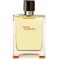 Perfume Hermes Terre D'Hermes EDT Masculino 100ML