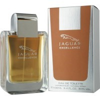 Perfume Jaguar Excellence Masculino 100ML