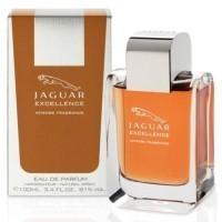 Perfume Jaguar Excellence Masculino 100ML